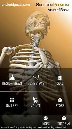 com-visiblebody-skeletal-1