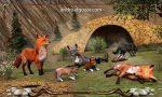 angry-fox-simulator-2