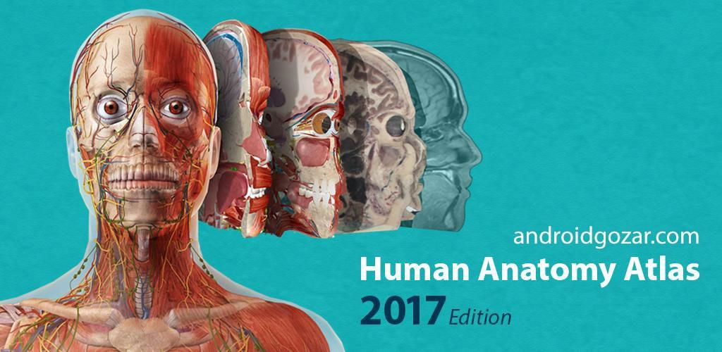 Human Anatomy Atlas 2017 2017.1.39 Unlocked دانلود اطلس آناتومی انسان + دیتا