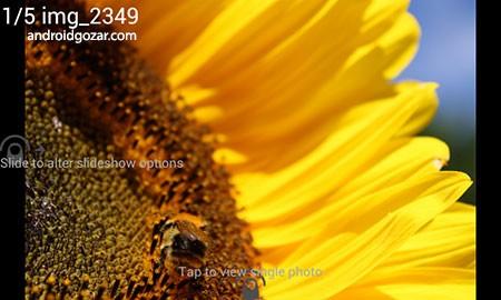 digital-photo-frame-2