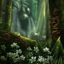forest-hd-2