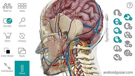 human-anatomy-atlas-2