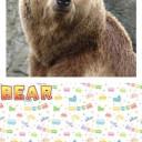 kids-english-vocabulary-3