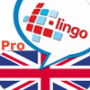 l-lingo-learn-english-icon