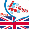 l-lingo-learn-english-icon