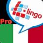 l-lingo-learn-italian-icon