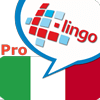 l-lingo-learn-italian-icon