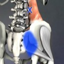 muscle-trigger-point-anatomy-8
