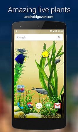 pixign-fishes-pro-wallpaper-4