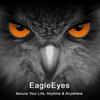 EagleEyes(Plus) 1.6.2 دانلود نرم افزار کنترل دستگاه های نظارتی