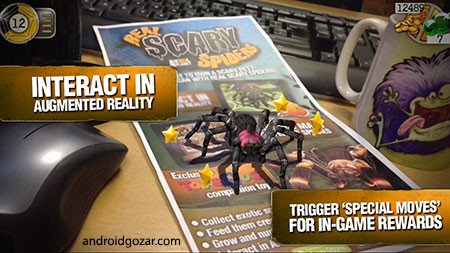 real-scary-spiders-3
