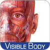 visiblebody-muscle-icon