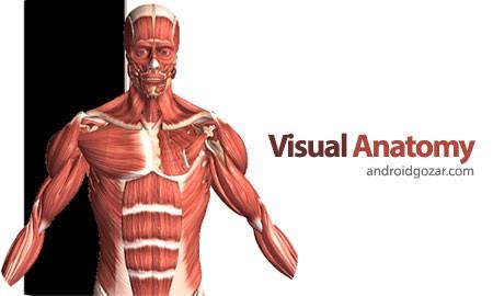 Visual Anatomy 4.1 Proper دانلود نرم افزار آناتومی سه بعدی+دیتا
