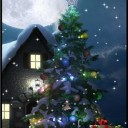 winter-moon-3