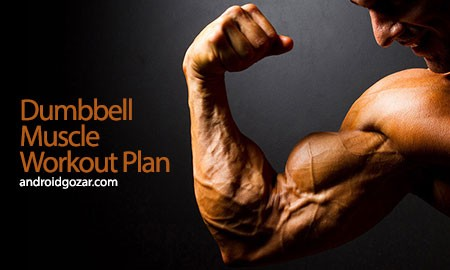 Dumbbell Muscle Workout Plan P 2.1 آموزش تمرینات عضله با دمبل