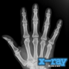 x-ray-scanner-icon