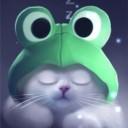 yang-the-cat-3