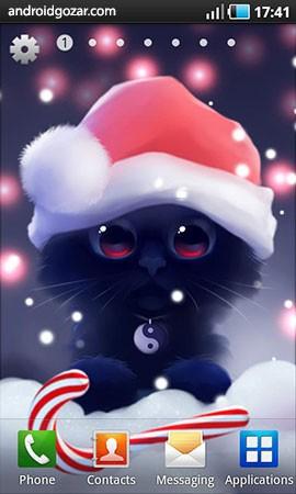 yin-the-cat-3
