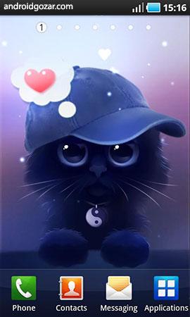 yin-the-cat-4