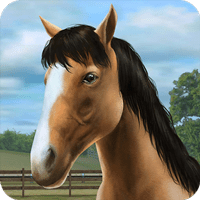 My Horse 1.37.1 دانلود بازی اسب من برای اندروید