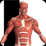 دانلود Visual Anatomy 2 4.0 برنامه مرجع آناتومی چند رسانه ای اندروید