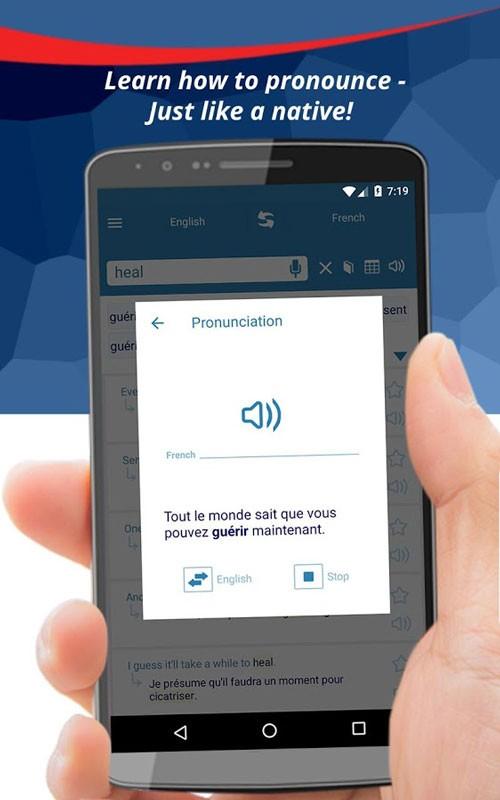Reverso Translation Dictionary Premium 8.8.5 دانلود برنامه دیکشنری اندروید