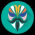 دانلود Magisk 20.4 برنامه نصب و مدیریت مجیسک اندروید