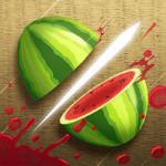 Fruit Ninja Classic 2.4.3.491336 دانلود بازی نینجای میوه + مود + دیتا