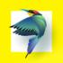 Bird Identifier 1.4 دانلود نرم افزار شناسایی پرندگان از روی عکس