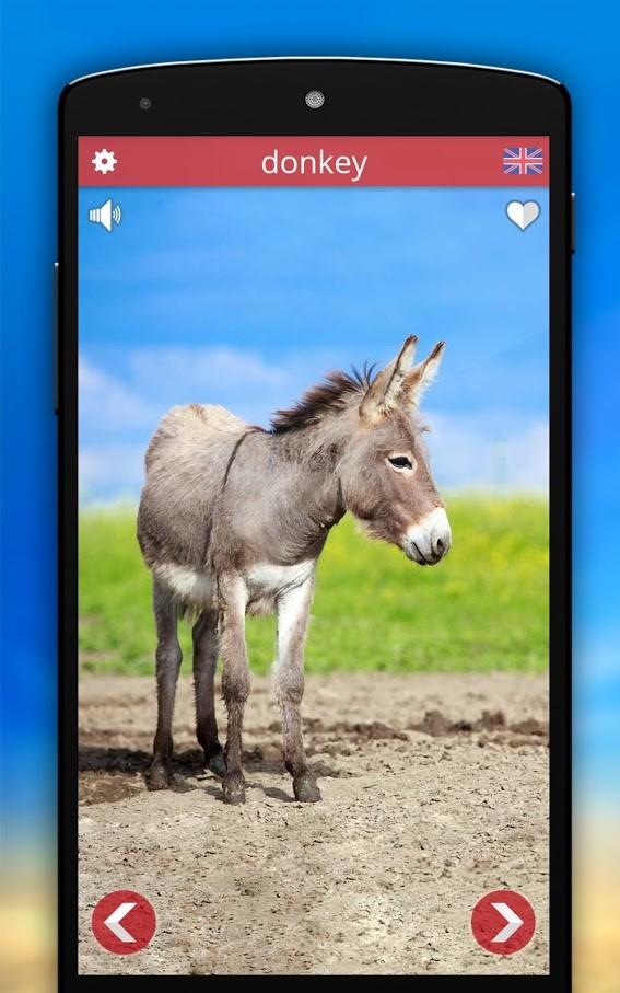 Animal Sounds Pro 2.7 دانلود برنامه صدای حیوانات برای اندروید