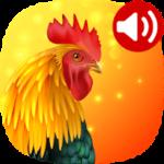 Animals: Ringtones 5.2 دانلود برنامه آهنگ زنگ صدای حیوانات برای اندروید