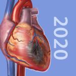 دانلود Physiology & Pathology 1.0.11 – برنامه فیزیولوژی و پاتولوژی اندروید