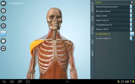 Anatomy 3D Pro – Anatronica 2.07 دانلود نرم افزار آناتومی بدن انسان