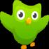 دانلود Duolingo Plus 5.9.6 برنامه آموزش زبان دولینگو اندروید