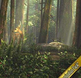 دانلود Forest HD 1.5.1 Mod لایو والپیپر جنگل اندروید