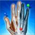 IMAIOS e-Anatomy 4.2 FULL نرم افزار اطلس آناتومی انسان اندروید