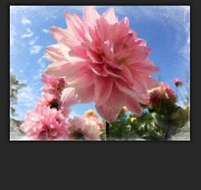 PhotoArtista – Oil 2.094 دانلود نرم افزار نقاشی رنگ روغن