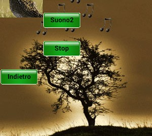 دانلود صدای اردک ماده Professional Birds Calls 1.1 دانلود نرم افزار صدای پرندگان ...
