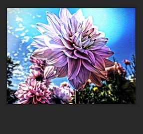 دانلود Simply HDR 3.999 برنامه ساخت عکس HDR در اندروید