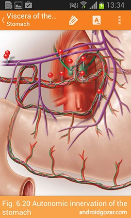 Sobotta Anatomy Atlas Full 2.10.5 دانلود نرم افزار اطلس آناتومی زوبوتا