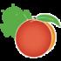 Holoo Accounting 4.3 دانلود نرم افزار حسابداری شخصی هلو اندروید