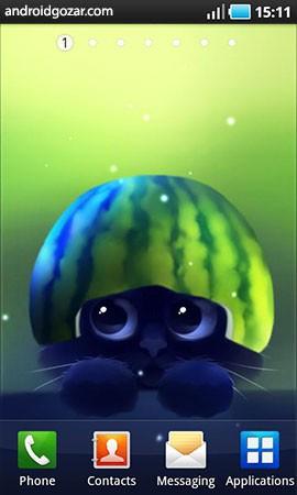 Yin The Cat 1.2.6 دانلود تصویر زمینه زنده گربه سیاه